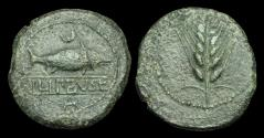 Ancient Coins - CE-PKBF - SPAIN - LIPENSE, SER (SEVILLA), AE Dupondius, ca.120-20BC.