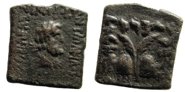 Ancient Coins - Bactrian Kings. Antialcidas. Ca. 115-95 BC. AE Square Indian Standard Unit (7.78 gm, 19mm). SNG ANS 1132