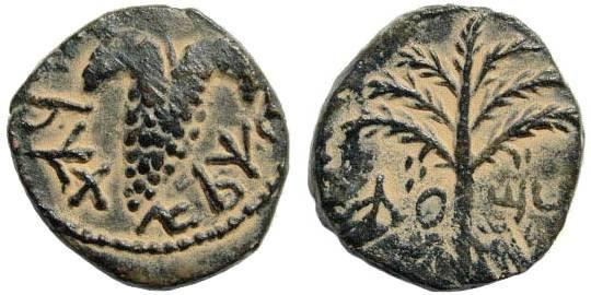 Ancient Coins - Judaea. Bar Kochba Revolt. 132-135 CE. AE 17mm (3.68 gm, 12h). Third Coinage Period. Mildenberg 158 (O4/ R9)