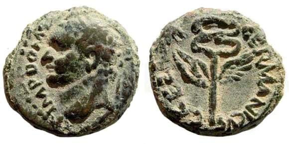 Ancient Coins - Judaea, Caesarea. Domitian 81-96 AD. AE 15mm (3.39 gm). Hendin 1457. Rare