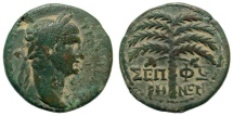 Ancient Coins - Galilaea, Sepphoris. Trajan, 98-117 AD. AE 24mm (8.41 gm). Rosenberger 4; SNG ANS 1090