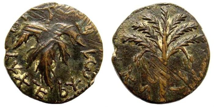 Ancient Coins - Judaea, Bar Kochba Revolt. 132-135 AD. AE 23mm (8.64 gm). Undated issue year 3 = 134/5 CE. Mildenberg 125 (O10/R89)