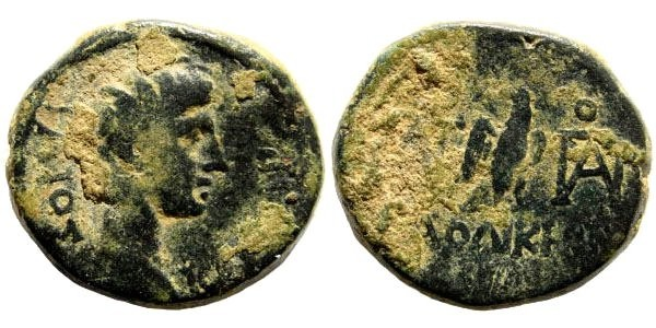 Ancient Coins - Phrygia, Laodikeia. Gaius Caesar, grandson of Augustus, struck ca 5 AD. AE 16mm (3.41 gm). RPC I, 2900; BMC 154