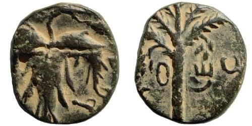 Ancient Coins - Judaea. Bar Kochba Revolt. 132-135 CE. AE 18mm (5.83 gm, 12h). Undated year 2 (133/4 CE). Mildenberg 79 (dies O6/R43). Half denomination?