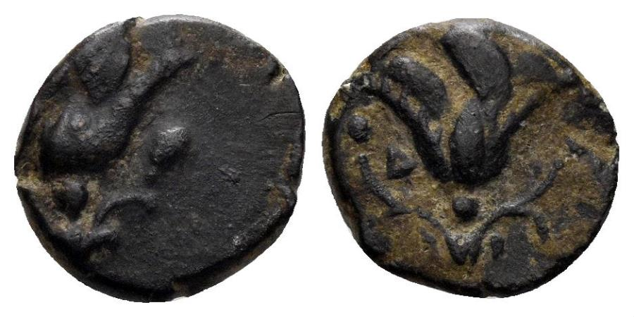 Ancient Coins - Rhodos, Rhodes. Circa 205-188 BC. AE 10mm (1.05 gm). SNG Keckman 599