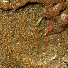 Ancient Coins - Syria, Kommagene. Zeugma. Philip II, 247-249 AD. AE 29mm (16.03 gm). SNG Copenhagen 35; BMC Galatia pg. 128, 35; SNG München 436 (same dies)