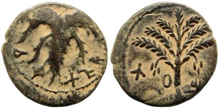 Ancient Coins - Judaea. Bar Kochba Revolt. 132-135 CE. AE 24mm (10.68 gm, 12h). Undated year 2 (133/4 CE). Mildenberg 146 (O11/R110)