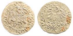 World Coins - Poland/ Lithuania. Sigismund II August. AR Half Grosz (1.22 gm, 19mm). 1560. Vilnius mint