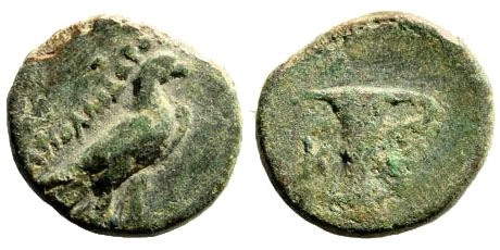 Ancient Coins - Aeolis, Kyme. Circa 350-20 AD. AE 14mm (1.82 gm). Apollodoros magistrate. BMC 28 (?)