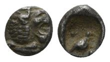 Ancient Coins - Ionia or Caria, uncertain mint. Miletos (?). 420-390 BC. AR Tetartemorion (0.30 gm, 6mm). SNG Kayan 944
