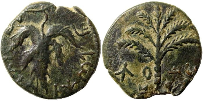 Ancient Coins - Judaea. Bar Kochba Revolt. 132-135 CE. AE 24mm (9.64 gm, 12h). Mildenberg 117 (dies O10/R81)