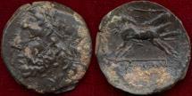 Ancient Coins - APULIA/ARPI  AE20   ZEUS Facing l.
