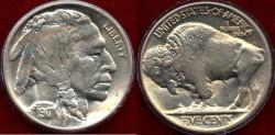 Us Coins - 1917  Buffalo 5c ....MS64  BEAUTY