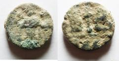 Ancient Coins - AS FOUND: BYZANTINE: Constans II (AD 641-668). AE , 12 nummi. Alexandria mint