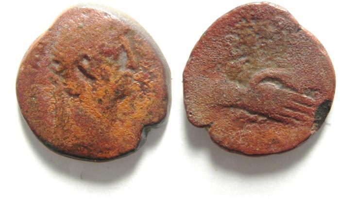 Ancient Coins -   CLAUDIUS I , EGYPT , ALEXANDRIA , AE OBOL