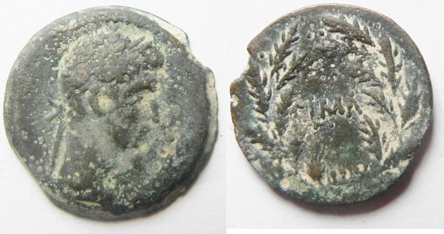 Ancient Coins - Egypt. Alexandria under Augustus (27 BC-AD 14). AE diobol (23mm , 6.43g). Struck in regnal year 41 (AD 10/11).