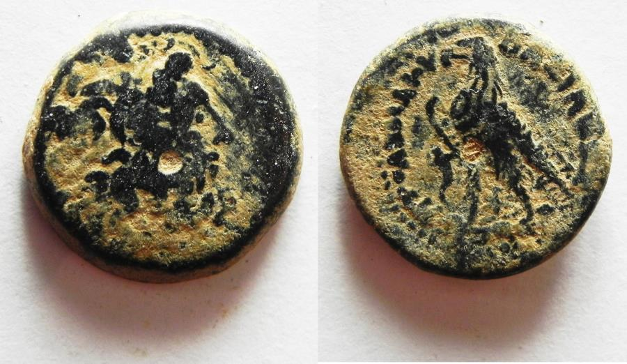 Ancient Coins - PTOLEMAIC KINGDOM. PTOLEMY II AE 15