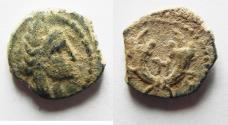 Ancient Coins - NABATAEAN KINGDOM. ARETAS IV AE 14. CHOICE AS FOUND