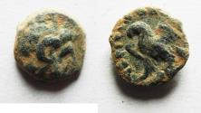 Ancient Coins - PTOLEMAIC EMPIRE. CYRENAICA. CYRENE. Cleopatra III and Ptolemy IX Soter II or Ptolemy IX 2nd reign circa 104-81 BC. AE 11