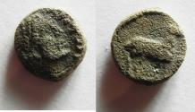 Ancient Coins - GREEK AE 11 WITH RAM