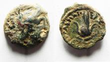 Ancient Coins - PTOLEMAIC KINGS of EGYPT. Ptolemy Apion. King of Kyrenaika, c. 104/1–96 BC. Æ Chalkous