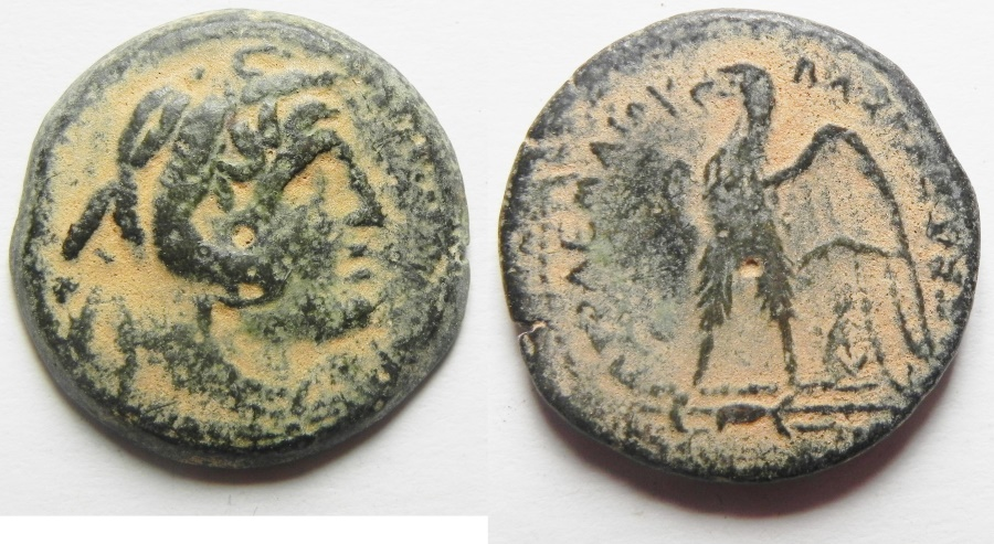 Ancient Coins - Ptolemaic Kingdom. Ptolemy II AE 20