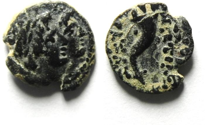 Ancient Coins - VERY NICE TINY SELEUKID AE 12 , AKE MINT