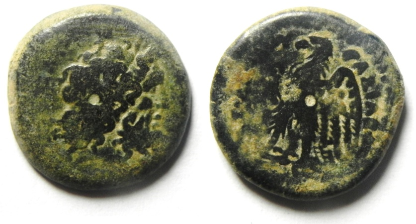 Ancient Coins - PTOLEMAIC KINGDOM , NICE PTOLEMY II AE 16