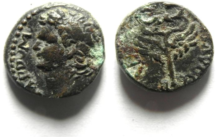 Ancient Coins -  Judaea Capta.  Domitian 81-96 AD. AE 14 , Caesarea. RARE COIN