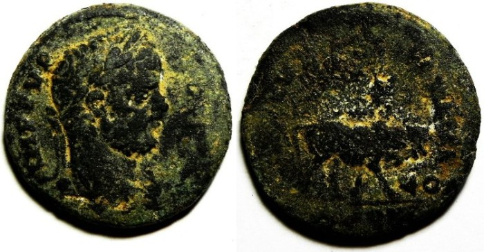Ancient Coins - PHOENICIA , TYRE , CARACALLA AE 26