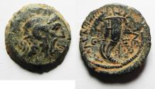 Ancient Coins - CHOICE: PTOLEMAIC KINGS of EGYPT. Ptolemy IX Soter II. 115-104/1 BC. Æ 20mm. Kyrene mint.