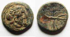 Ancient Coins - PTOLEMAIC KINGS of EGYPT. Ptolemy II Philadelphos. Æ 22. Struck under Magas, 277-261 BC
