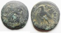 PTOLEMAIC KINGDOM. PTOLEMY II AE 18