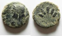 Ancient Coins - Decapolis. Philadelphia. Pseudo-autonomous issue. temp. Titus, AD 79-81. Æ 19. Dated CY 143 (AD 80/1).