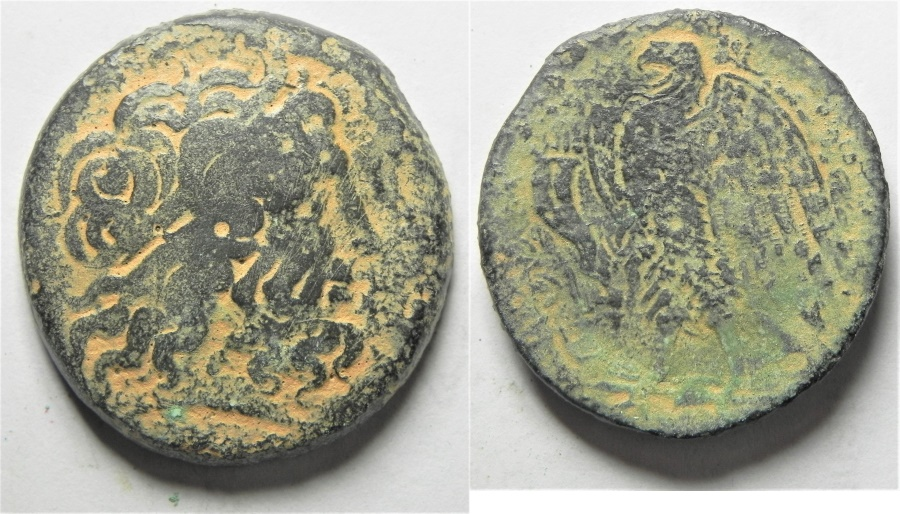 Ancient Coins - GREEK. PTOLEMAIC KINGS. PTOLEMY II AE 37. SIDON MINT