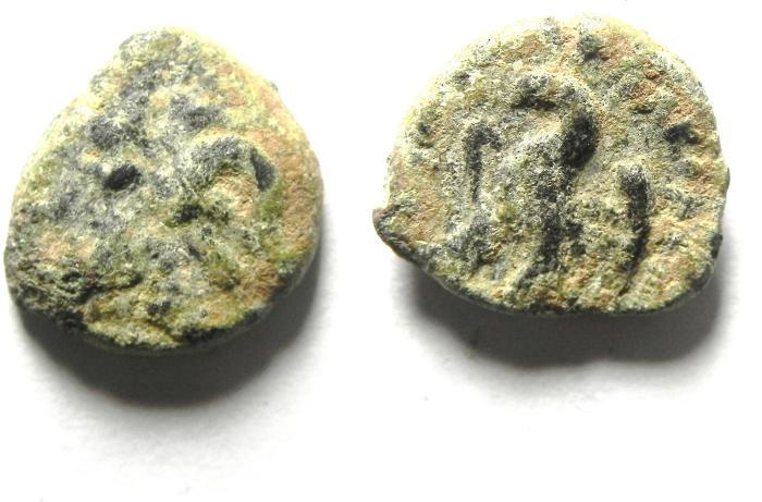 Ancient Coins - PTOLEMAIC AE 11 , CYRENE
