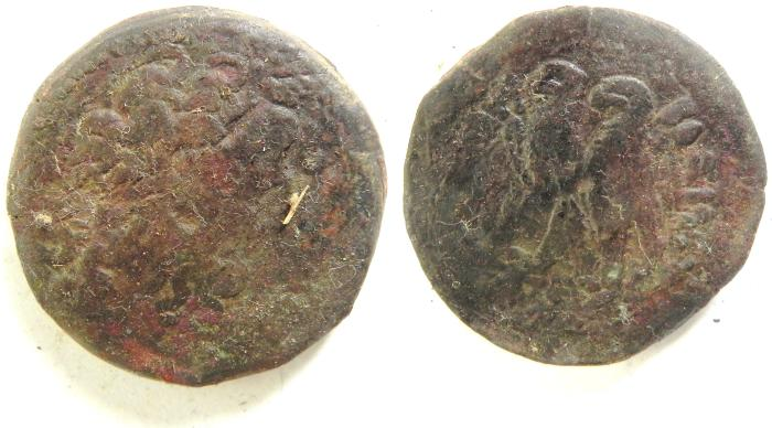 Ancient Coins - PTOLEMAIC KINGDOM AE 33 , 27.96 GM