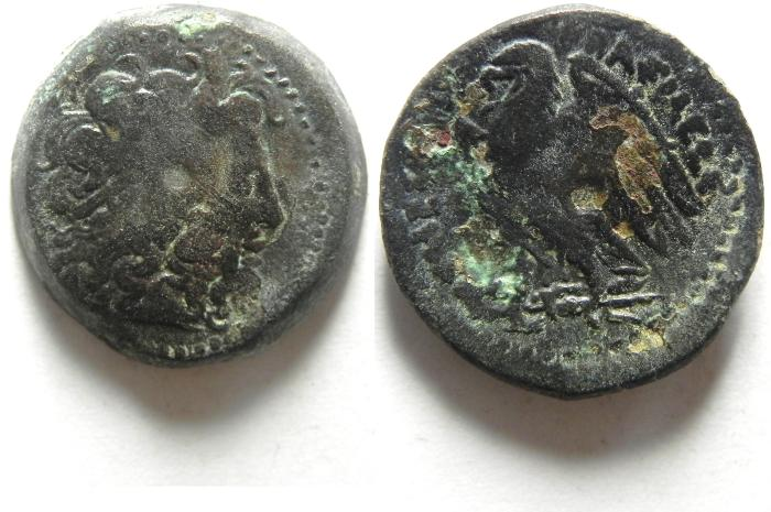 Ancient Coins - Ptolemaic Kingdom Of Egypt. PTOLEMY II AE 19