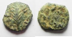 Ancient Coins - AS FOUND : JUDAEA. PORCIUS FESTUS UNDER NERO AE PRUTAH