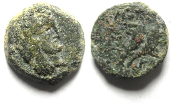 Ancient Coins -  NABATAEAN AE 13 , ARETAS IV's SON - PHASAEL , AS FOUND