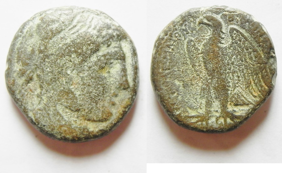Ancient Coins - PTOLEMAIC KINGDOM, PTOLEMY IV AE 20, ALEXANDER'S THE GREAT HEAD, ALEXANDRIA MINT