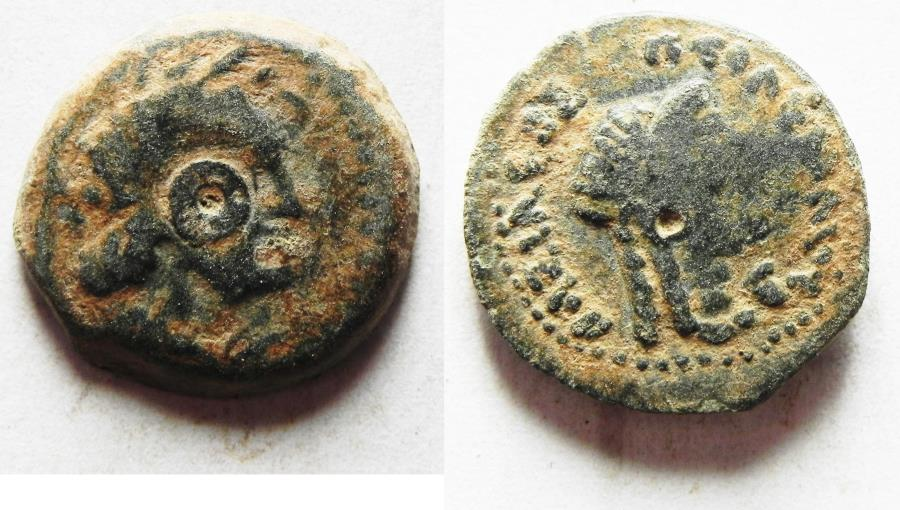 Ancient Coins - PTOLEMAIC EMPIRE. CYRENE , PTOLEMY V AE17 , WITH LIBYA ON REVERSE