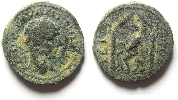 Ancient Coins - ARABIA , PETRA , SCARCE AE 20 , ELAGABALUS