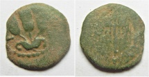 Ancient Coins - HERODIAN DYNASTY. Agrippa I, 37-44 AD. AE Prutah.