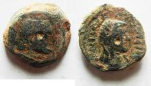 Ancient Coins - AS FOUND: PTOLEMAIC EMPIRE. CYRENE , PTOLEMY V AE17 , WITH LIBYA ON REVERSE