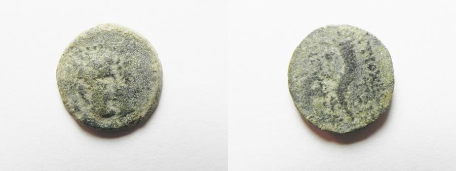 Ancient Coins - SELEUCID, Autonomous. AKKO Mint. Struck 132 BC.