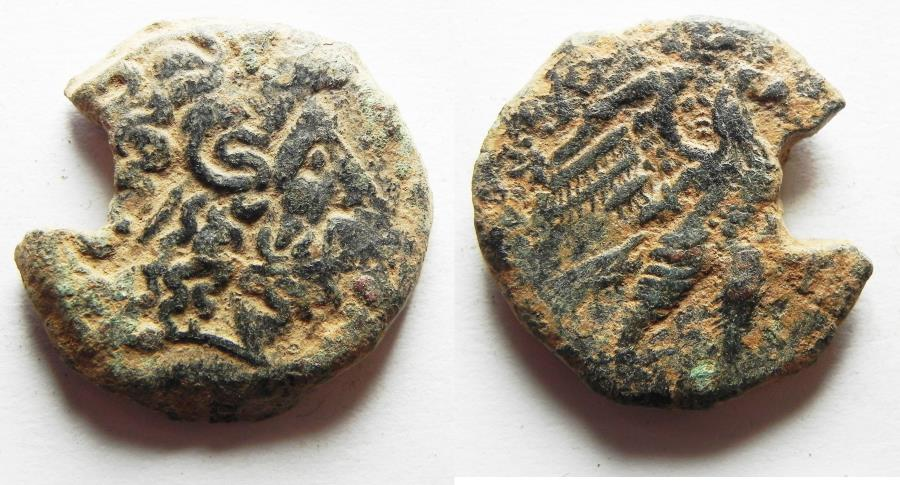 Ancient Coins - Egypt,Ptolemy VIII Euergetes II (145-116 BC). Cyrene. AE 24