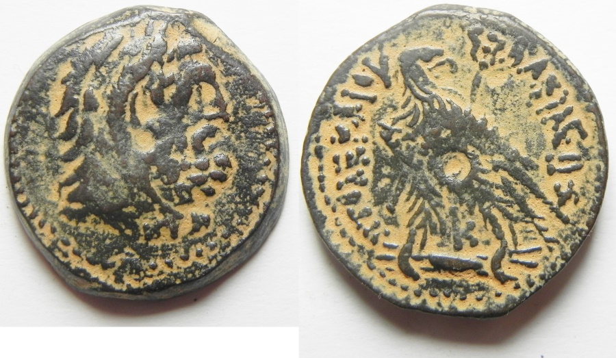 Ancient Coins - Ptolemaic Kingdom. Ptolemy VI AE 24