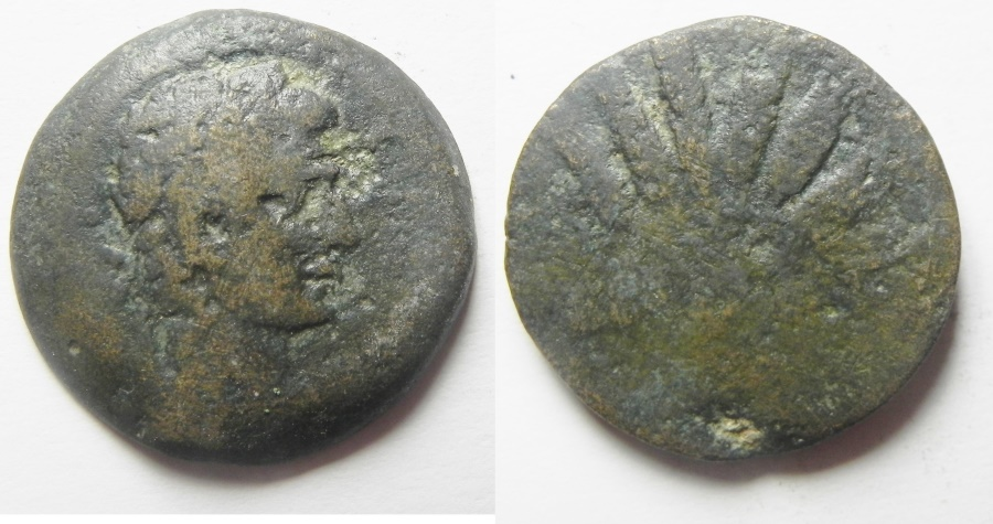 Ancient Coins - Egypt. Alexandria under Augustus (27 BC-AD 14). AE diobol (24mm , 10.19g). Corn Bundle