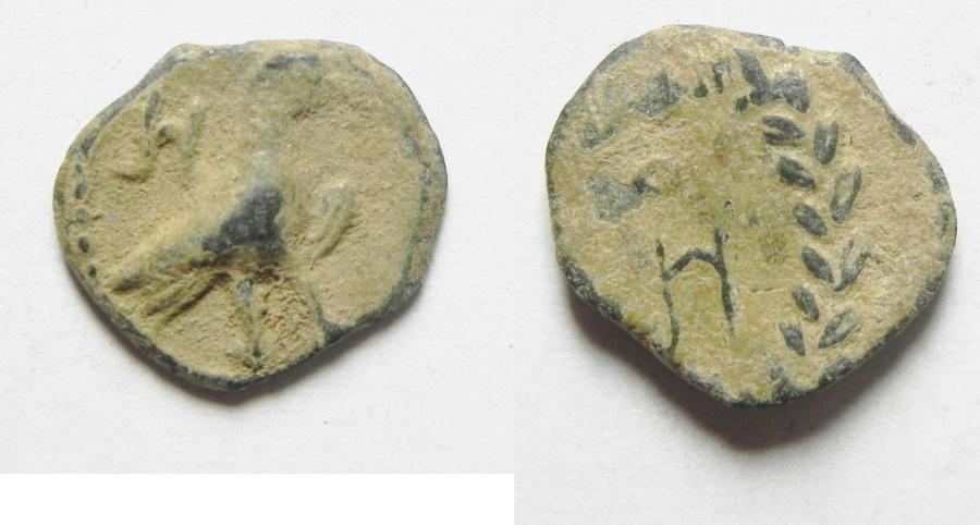 Ancient Coins - NABATAEAN KINGDOM, ARETAS IV AE 12 , BEAUTIFUL EAGLE
